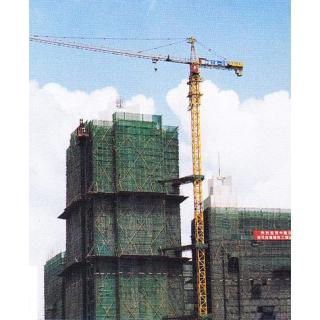 Cẩu tháp NTP
